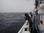 Xアンバサダー 西本 康生氏の釣行レポート更新しました!